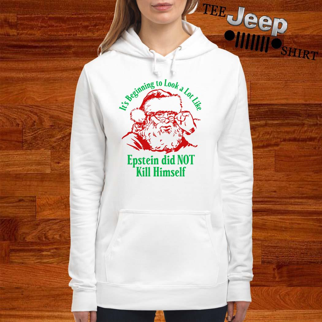 Santa Claus It's Beginning To Look A Lot Like Epstein Did Not Kill Himself Hoodie